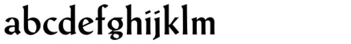 Schneidler Latein Medium Font LOWERCASE