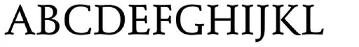 Schneidler Medium Font UPPERCASE