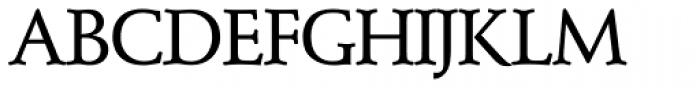 Schneidler SH Medium Font UPPERCASE