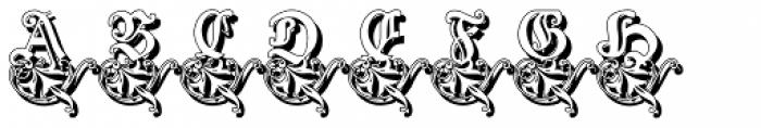 Schneidler Zierbuchstablen Shadow Font LOWERCASE