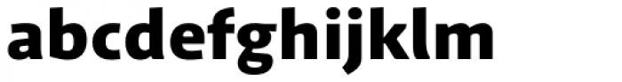 Schuss Sans PCG Heavy Font LOWERCASE