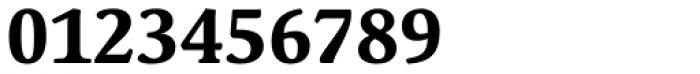 Schuss Serif Pro Bold Font OTHER CHARS