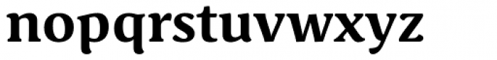 Schuss Serif Pro Bold Font LOWERCASE