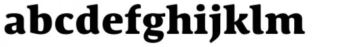 Schuss Serif Pro Heavy Font LOWERCASE
