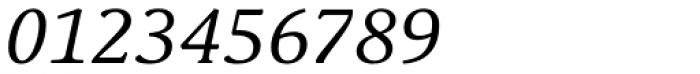 Schuss Serif Pro Italic Font OTHER CHARS