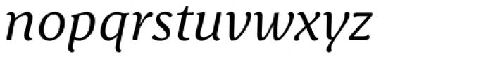 Schuss Serif Pro Italic Font LOWERCASE