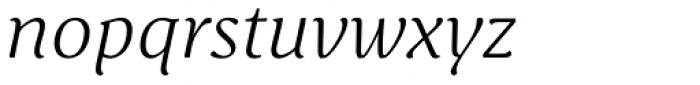 Schuss Serif Pro Light Italic Font LOWERCASE