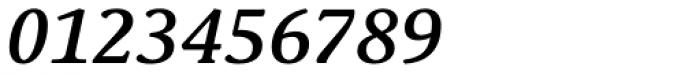 Schuss Serif Pro Medium Italic Font OTHER CHARS