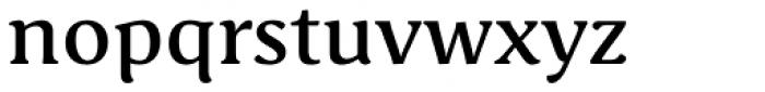 Schuss Serif Pro Medium Font LOWERCASE