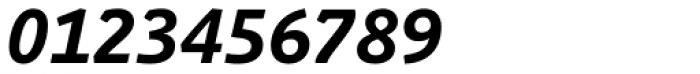 Schuss Slab Pro Bold Italic Font OTHER CHARS