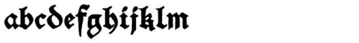 Schwarzkopf New Font LOWERCASE