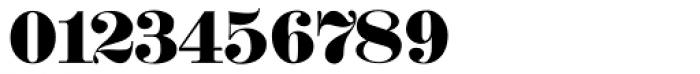Schwere Fraktur Pro Font OTHER CHARS
