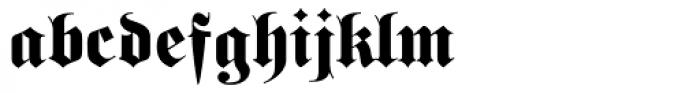 Schwere Fraktur Pro Font LOWERCASE