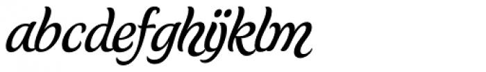 Schwung Alternate Font LOWERCASE