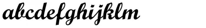 Script MT Std Bold Font LOWERCASE