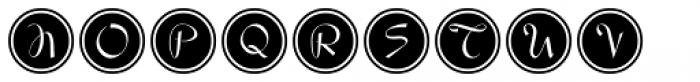 Script Spot Initials JNL Font UPPERCASE