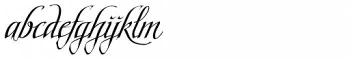 Scriptissimo End Font LOWERCASE