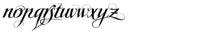 Scriptissimo Forte Swirls Start Font LOWERCASE