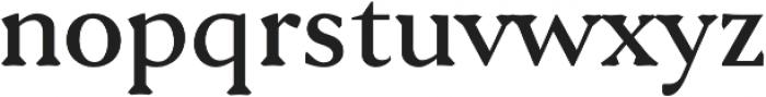 Serenity Serif Bold otf (700) Font LOWERCASE