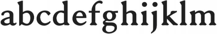 Serenity Serif Heavy otf (800) Font LOWERCASE
