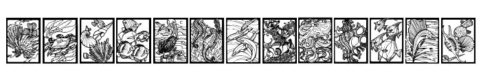 Sealife Font LOWERCASE