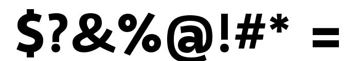 Selawik Bold Font OTHER CHARS