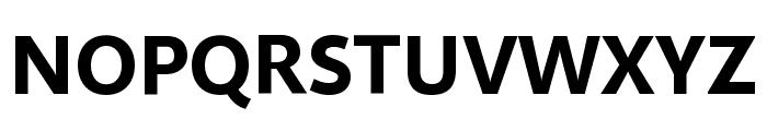 Selawik Bold Font UPPERCASE