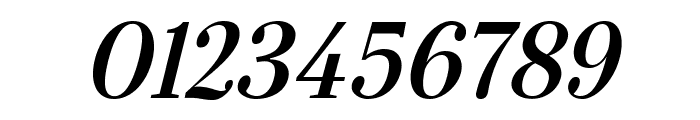 Serif-BoldItalic Font OTHER CHARS