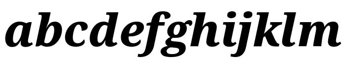 Serif ExtraBold Italic Font LOWERCASE