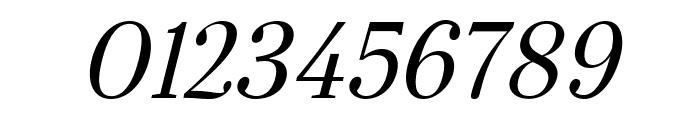 Serif-Italic Font OTHER CHARS