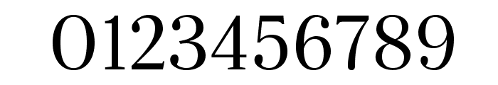 Serif-Regular Font OTHER CHARS