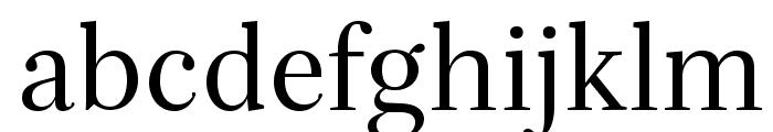 Serif-Regular Font LOWERCASE