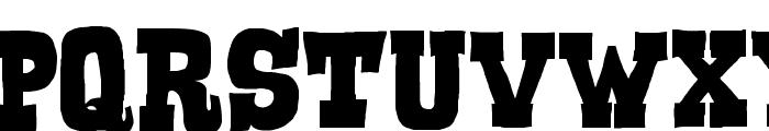 Serif of Nottingham Font LOWERCASE