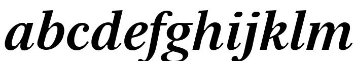 Serif12Beta-BoldItalic Font LOWERCASE