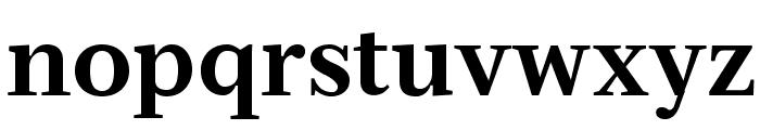 Serif12Beta-Bold Font LOWERCASE