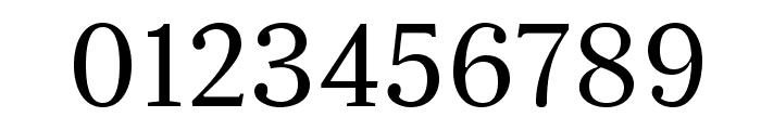 Serif12Beta-Regular Font OTHER CHARS