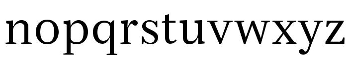 Serif12Beta-Regular Font LOWERCASE