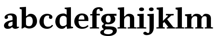 Serif6Beta-Bold Font LOWERCASE