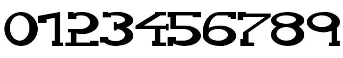 Serifonwide Font OTHER CHARS