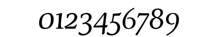 Servus Text Display Italic display Font OTHER CHARS