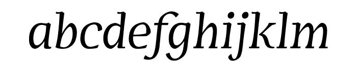 Servus Text Display Italic display Font LOWERCASE