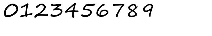 Segoe Script Regular Font OTHER CHARS