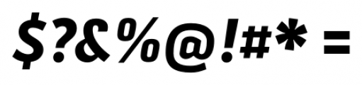 Secca ExtraBold Italic Font OTHER CHARS