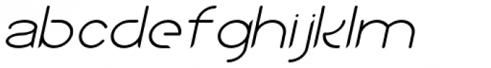 Sean Henrich ATF Light Italic Font LOWERCASE