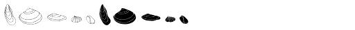 Seashells Font OTHER CHARS