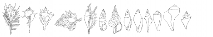Seashells Font UPPERCASE