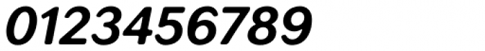 Seconda XtraSoft Bold Italic Font OTHER CHARS