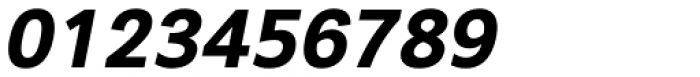 Segaon Extra Bold Italic Font OTHER CHARS