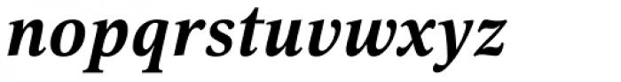 Selina Bold Italic Font LOWERCASE