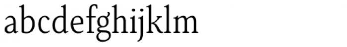 Senlot Serif Condensed Light Font LOWERCASE